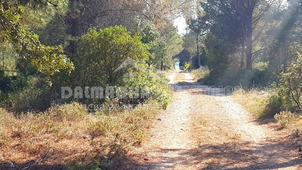 Land, 1200 m2, For Sale, Vir