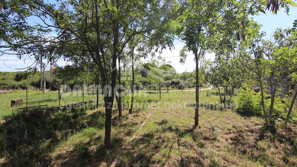 Land, 1000 m2, For Sale, Zadar-okolica - Crno